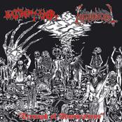 Blasphemophagher/Necroholocaust split 7''