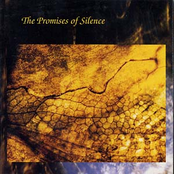 The Promises Of Silence