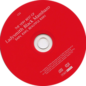Ladysmith Black Mambazo: The Very Best of Ladysmith Black Mambazo: Rain, Rain, Beautiful Rain (disc 2)