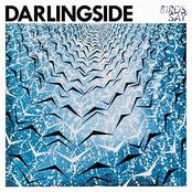 Birds Say (Deluxe)