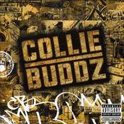 Collie Buddz: Collie Buddz