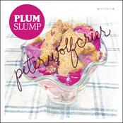 Plum Slump