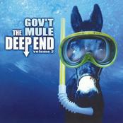 Gov't Mule: The Deep End, Vol. 2