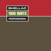 Shellac: 1000 Hurts