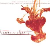 Rh- (English Limited Edition)