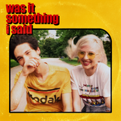 Was It Something I Said - Single