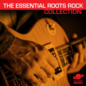 The Essential Roots Rock & Heartland Rock Collection ジャケット写真