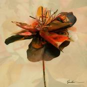 Garden - EP