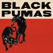 Black Pumas: Black Pumas (Deluxe Edition)