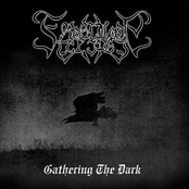 Gathering the Dark
