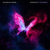 William Black: Butterflies