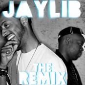 Jaylib - The Remix