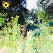 Sunflower - Single