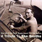 Sweet and Tender Hooligans: Stop Me If You Think You've Heard This One Before - a Tribute to the Smiths