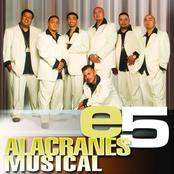 Alacranes Musicales: e5