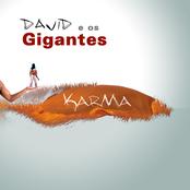 david e os gigantes