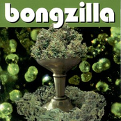 Bongzilla: Stash
