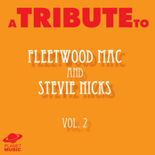 A Tribute to Fleetwood Mac and Stevie Nicks, Vol. 2 ジャケット写真