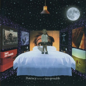 Potency: The Best of Ian McNabb