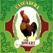Bogary