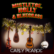 Mistletoe, Holly & Bluegrass