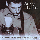 Andy Falco: Sentenced To Life With The Blues