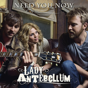 Need You Now - Single cover art