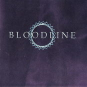 The Bloodline Project