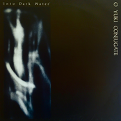 Into Dark Water