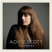 Aoife Scott: Homebird