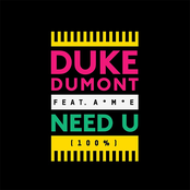 Duke Dumont: Need U (100%)
