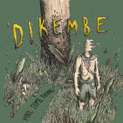 Dikembe: Hail Something