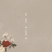 In My Blood - Single
