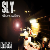 Sly Tendencies: Kitchen Cutlery