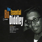 The Essential Bo Diddley