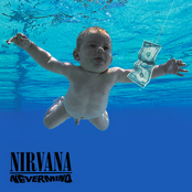 Territorial Pissings by Nirvana