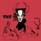 Liily: Toro