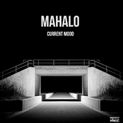 Mahalo: Current Mood