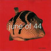 June Of 44: In the Fishtank