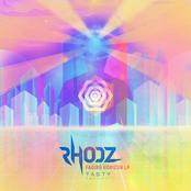 Fading Horizon LP