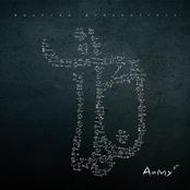 AMYF (Premium Edition)