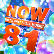 Now That's What I Call Music!, Vol. 81