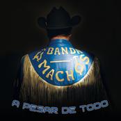 Banda Machos: A Pesar de Todo