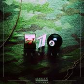 718 Jungle