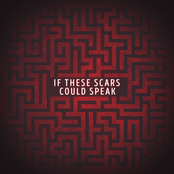 If These Scars Could Speak