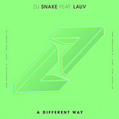 DJ Snake - A Different Way (with Lauv)