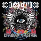 Bassnectar: Divergent Spectrum