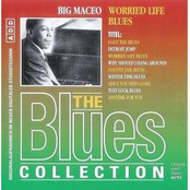 The Blues Collection 38: Worried Life Blues