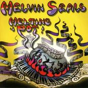Melvin Seals: Melting Pot