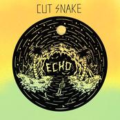 Cut Snake: Echo